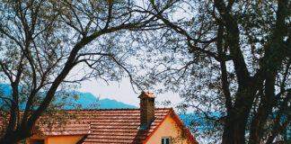 Dlaczego warto zdecydować się na dachówkę ceramiczną